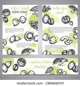 Nuts and Seeds background collection hand drawn vector illustration with Nuts and Seeds elements, Vintage retro style