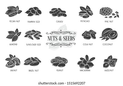 Nuts and seeds glyph icons. Cola nut, pumpkin seed, peanut and sunflower seeds. Pistachio, cashew, coconut, hazelnut and macadamia. Retro style, vector illustration.