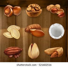 Nuts in the shell. Peanuts, pistachio, hazelnut, cocoa, walnut. Vector icon set