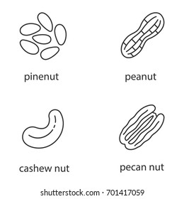 Nuts types linear icons set. Thin line contour symbols. Pinenut, peanut, cashew and pecan nuts. Isolated vector outline illustrations