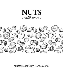 Nuts vector vintage illustration. Hand drawn engraved food objects. Great for label, banner, flyer, card, business promote.