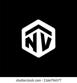 NV Initial letter hexagonal logo vector