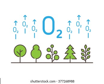 O2 (oxygen) linear vector illustration with trees, forest, plant, arrows. Natural (ecology, ecological) oxygen creative graphic concept. Natural eco oxygen process for science, chemistry, biology.