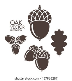 Oak. Acorn. Leaf. Vector illustration