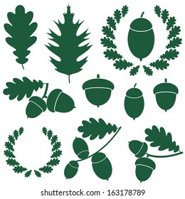 Oak and acorns. Abstract oak on white background. Logo. EPS 10. Vector illustration