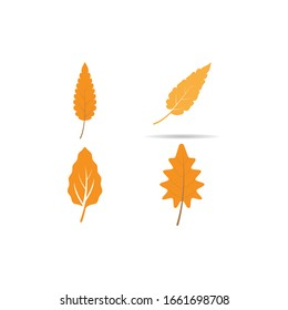 oak leaf background vector design template