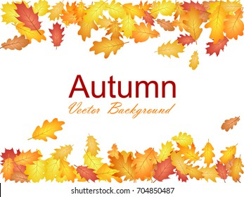 Oak leaf border abstract background seasonal vector illustration. Autumn leaves falling frame graphic design. Fall season specific border vector background. Oak tree autumn foliage on white.