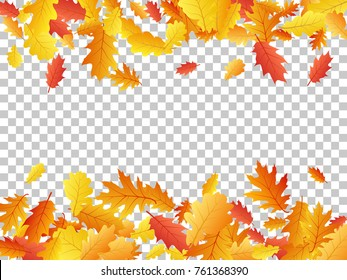 Oak leaf border abstract background seasonal vector illustration. Autumn leaves falling frame graphic design. Fall season specific border vector background. Oak tree autumn foliage on transparent.