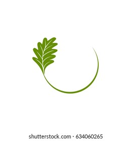 Oak leaf and line half circle logo concept