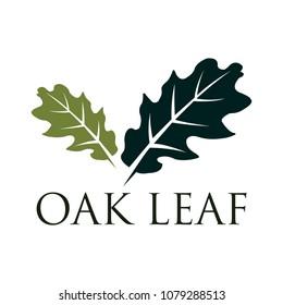 Oak leaf vector logo isolated. Logo templates.