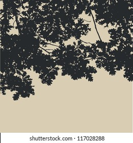 oak leaves and branches silhouette. detailed vector illustration