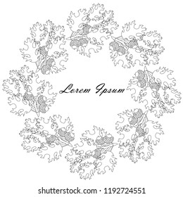 Oak leaves, fruits monochrome circle background, Lorem Ipsum with black outlines, design element stock vector illustration for web, for print