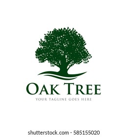 oak tree concept logo icon vector template