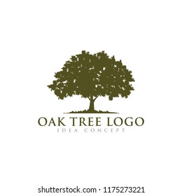 Oak Tree Concept Logo  Template