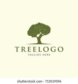 oak tree, oak leaf design logo template