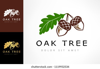 Oak tree logo. Acorn vector.