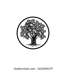 oak tree logo with circle lines surrounding it, dark color on white background