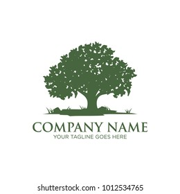 oak tree logo design