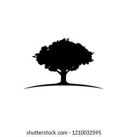 oak tree logo image