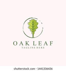 OAK vector quality modern creative illustrator