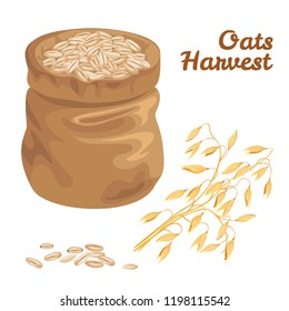 Oat Grain Sack. Ears of oats, grains in a bag isolated on white background. Vector illustration of cereal in cartoon flat style.