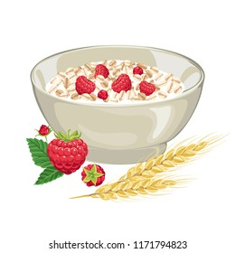 Oatmeal with raspberries in a bowl isolated on white background. Oatmeal cereal flakes, raspberries with leaves, spikelets of wheat. Vector illustration of a natural breakfast cereal in a flat style.