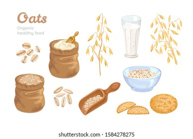 Oats set. Bag of oat flour, sack of grains, wooden scoop with cereals, golden ears of corn, oat milk and cookies. Oat flakes and bowl with oatmeal. Organic food Vector illustration. Cartoon flat style