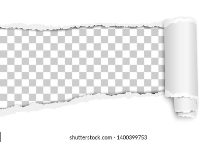 Oblong torn hole in white sheet of paper with transparent background, shadow and paper curl. Vector paper mockup.