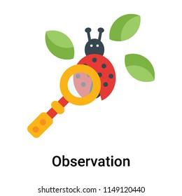 Observation icon vector isolated on white background for your web and mobile app design, Observation logo concept