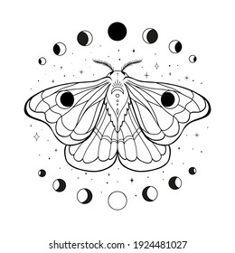 Occult illustration of flying moth. Hand drawn celestial element with moon phases. Flying butterfly alchemy logo design