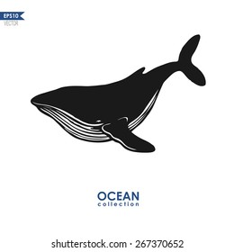 ocean collection, big blue whale isolated on white, black and white vector design
