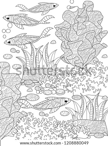 Ocean Coloring Books For Adults
