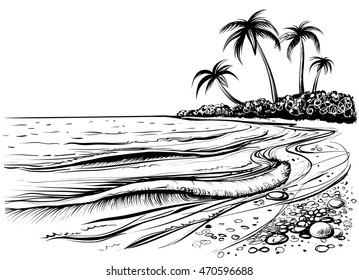 Ocean or sea beach with waves, sketch. Black and white vector illustration of sea shore with palms. Hand drawn seaside view.