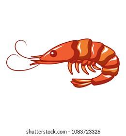 Ocean shrimp icon. Cartoon of ocean shrimp vector icon for web design isolated on white background