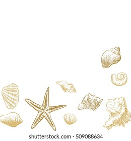 Ocean theme banner background,  Sea Shells Banner Design.place for text