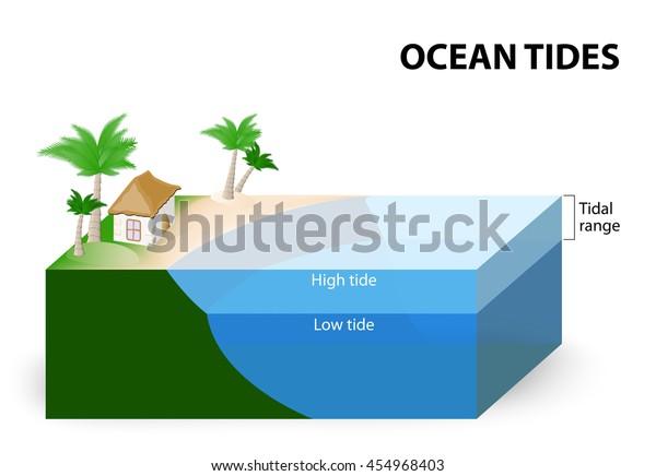 Ocean Tides Tidal Range Tidal Range Stock Vector (Royalty