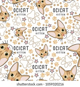 Ocicat : Cat breed collection : Seamless Pattern : Vector Illustration