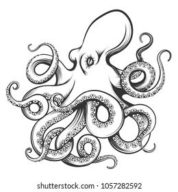 Octopus drawn in engraving style. Isolated on white background. Vector Illustration.