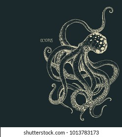 The octopus hand drawing on dark  background