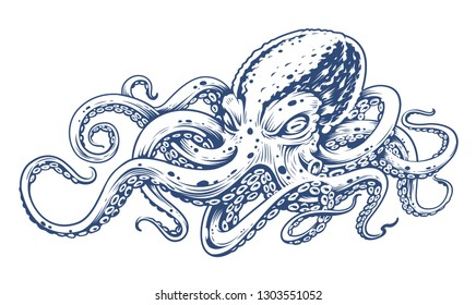 Octopus Vintage Vector Art isolated on white. Engraving style vector illustration of octopus.