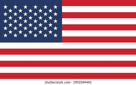 Official American Flag Vector Image
