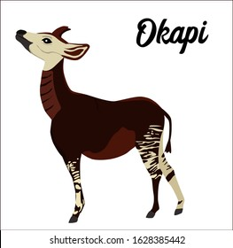Okapi vector illustration on white background. Design elements, perfect for poster, logo, card, book, label or card. The animal is endangered