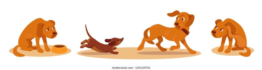 Old dog, poor appetite, low activity, bad hearing. Old dog problems. Cartoon vector illustrasion