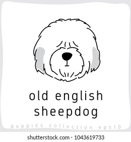 Old English Sheepdog : Dog Breed Collection : Vector Illustration