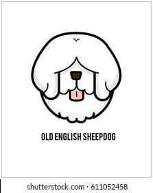 Old English Sheepdog isolated on white background.