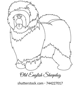 Old English Sheepdog outline vector illustration