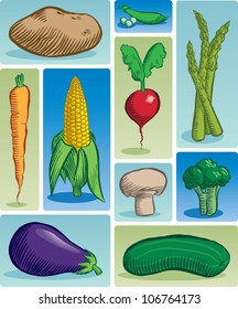 Old fashioned etched style illustration of various common vegetables.