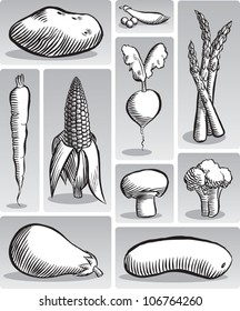 Old fashioned etched style illustration of various common vegetables, in black and white.