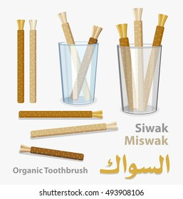Old islamic traditional natural toothbrush Miswak or Siwak (Text on arabic). Salvadora persica tree twig. Symbol of arabic culture.