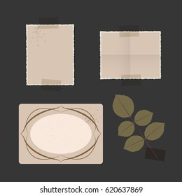 Old photo frames on an album, rose leaves and adhesive strips